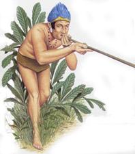 Среди оружия папуасов - бамбуковая духовая трубка. Это орудие настоящего охотника.